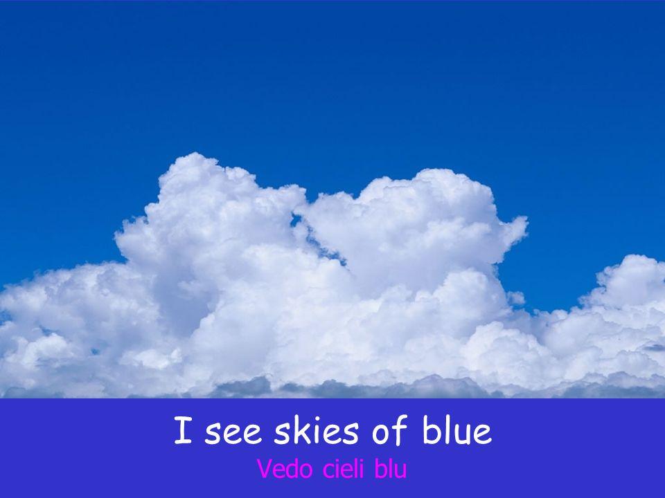 I see skies of blue Vedo cieli blu
