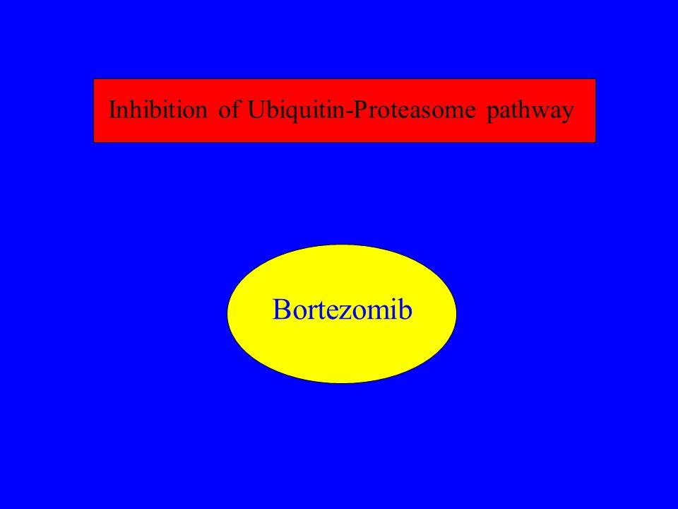 Inhibition of Ubiquitin-Proteasome pathway Bortezomib