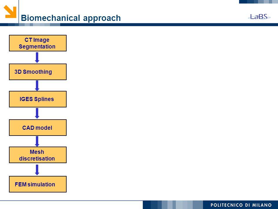 Biomechanical approach (IDL) CT Image Segmentation 3D SmoothingIGES Splines CAD model Mesh discretisation FEM simulation