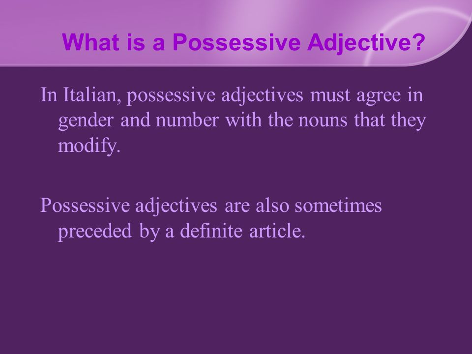 What is a Possessive Adjective? In Italian, possessive adjectives must agree in gender and number with the nouns that they modify. Possessive adjectiv