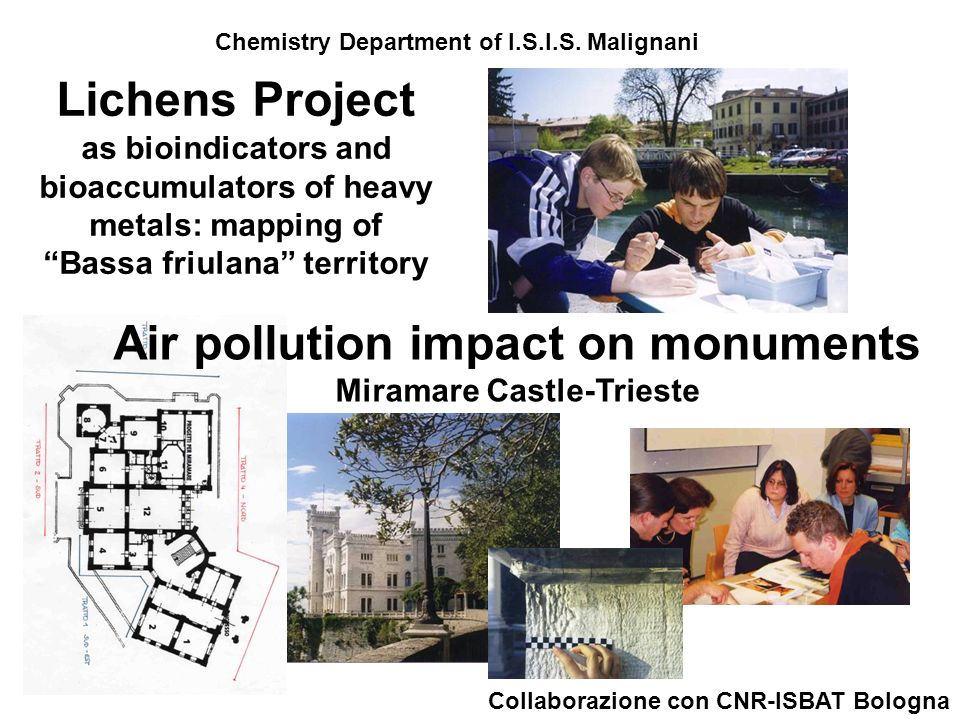Lichens Project as bioindicators and bioaccumulators of heavy metals: mapping of Bassa friulana territory Air pollution impact on monuments Miramare C