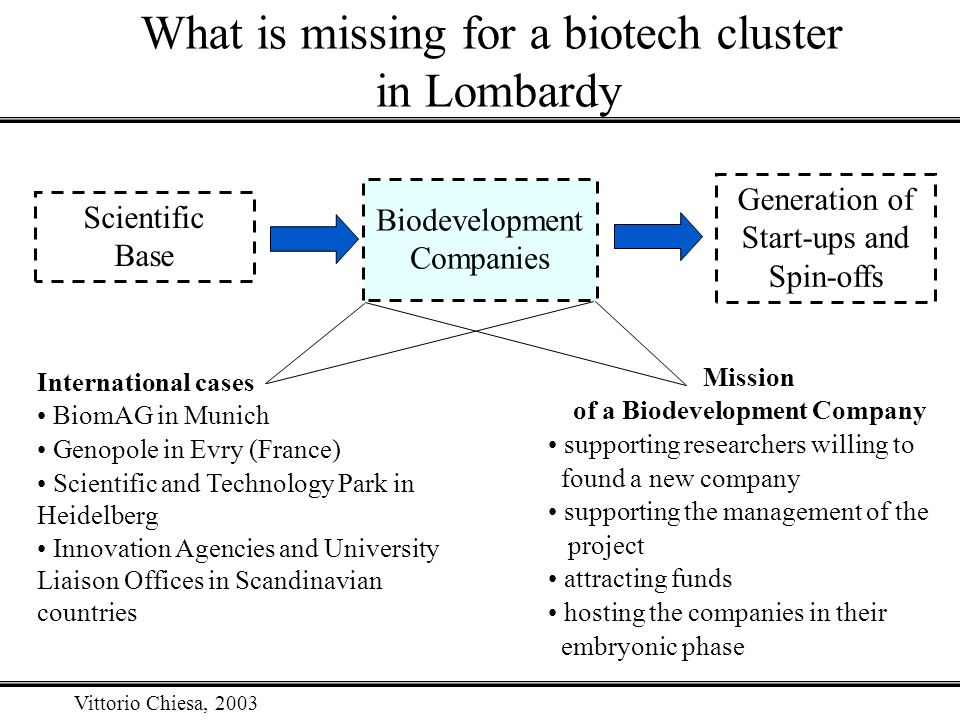 Vittorio Chiesa, 2003 What is missing for a biotech cluster in Lombardy Biodevelopment Companies Scientific Base Generation of Start-ups and Spin-offs