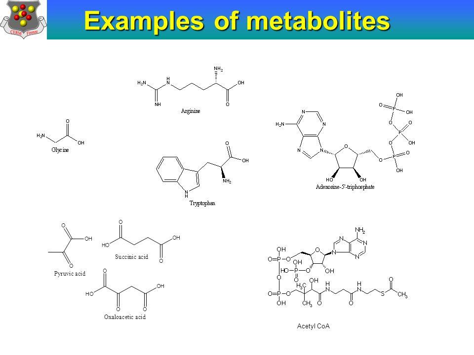 Acetyl CoA Examples of metabolites O O OH Pyruvic acid O OH O HO Succinic acid O O HO O OH Oxaloacetic acid