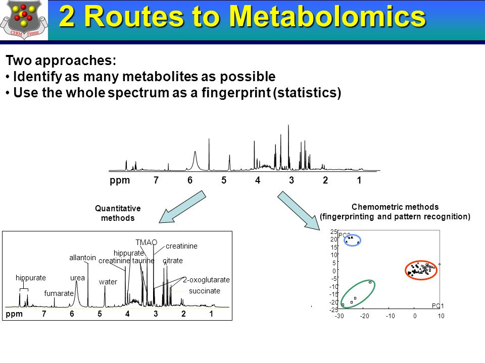 1234567ppm Quantitative methods Chemometric methods (fingerprinting and pattern recognition) Two approaches: Identify as many metabolites as possible