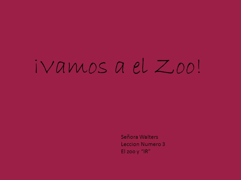 Use Me to Find Other Animals in Spanish!