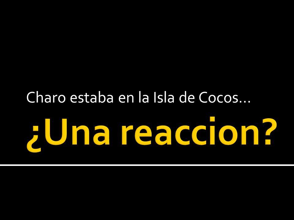 Charo estaba en la Isla de Cocos…