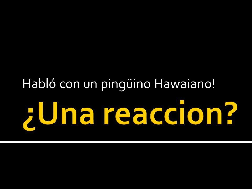 Habló con un pingüino Hawaiano!