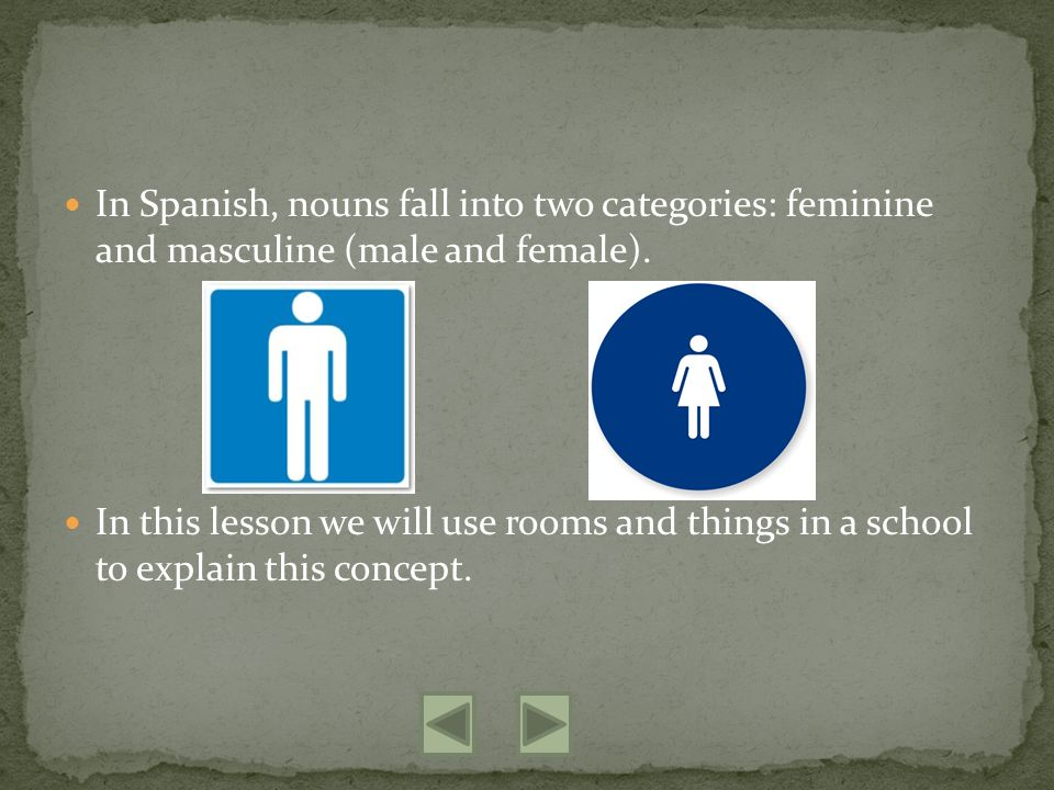 In Spanish, nouns fall into two categories: feminine and masculine (male and female).