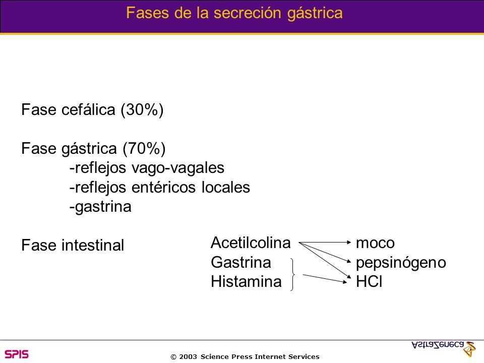 © 2003 Science Press Internet Services Peptides that affect gastric acid secretion
