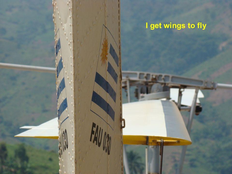 Nuestras alas por el mundo...