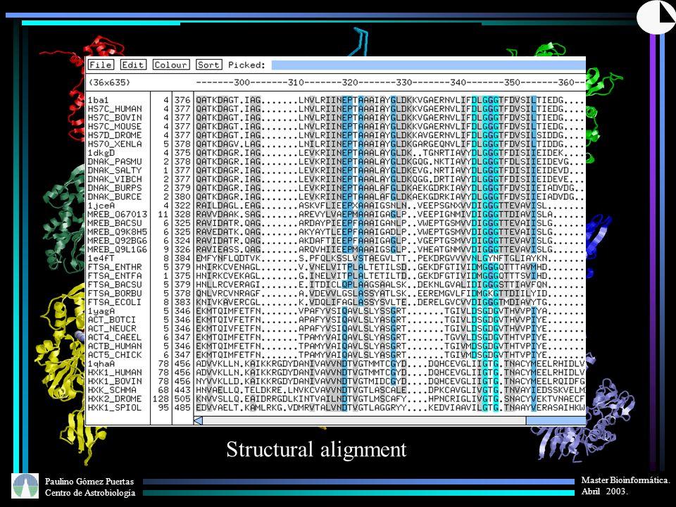 Paulino Gómez Puertas Centro de Astrobiología Master Bioinformática. Abril 2003. Structural alignment