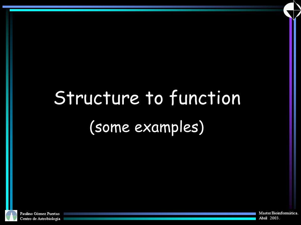 Paulino Gómez Puertas Centro de Astrobiología Master Bioinformática. Abril 2003. Structure to function (some examples)