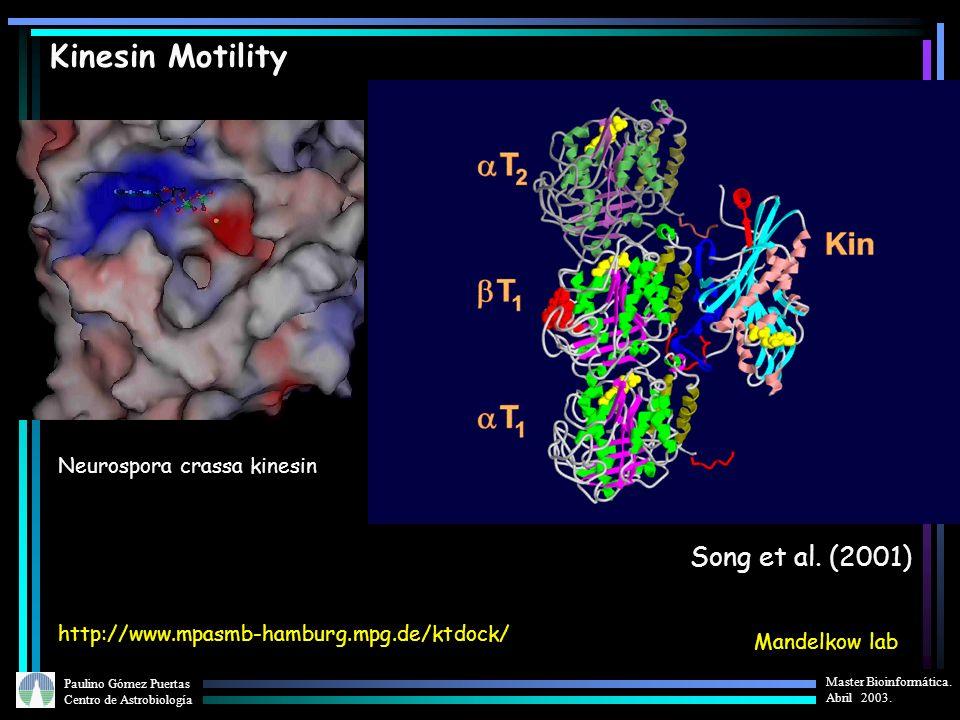 Paulino Gómez Puertas Centro de Astrobiología Master Bioinformática. Abril 2003. Neurospora crassa kinesin Mandelkow lab Song et al. (2001) http://www