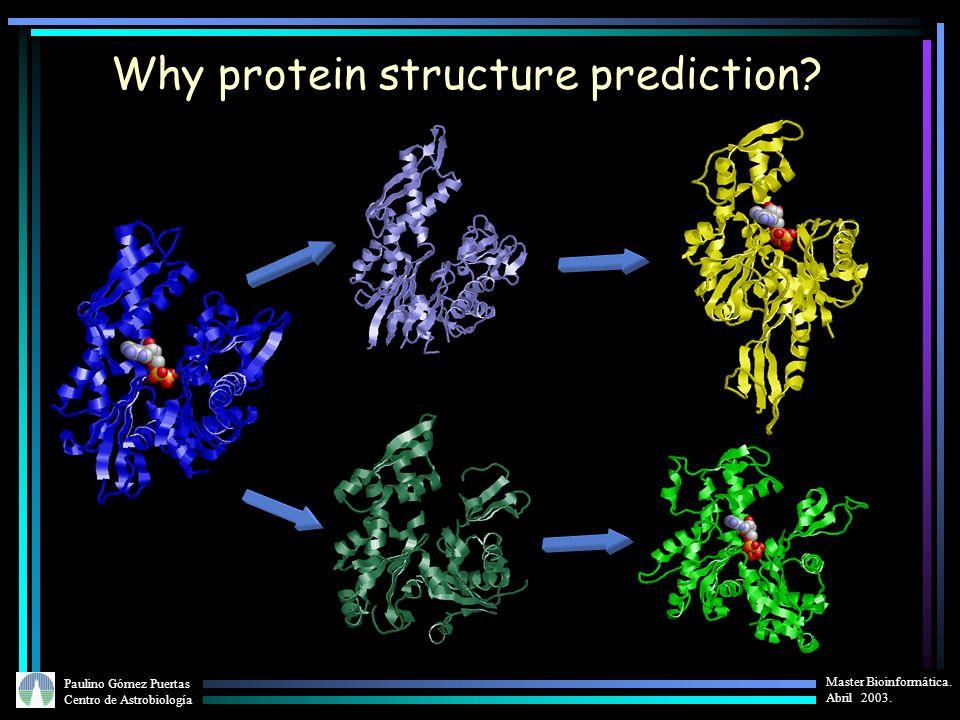 Paulino Gómez Puertas Centro de Astrobiología Master Bioinformática. Abril 2003. Why protein structure prediction?