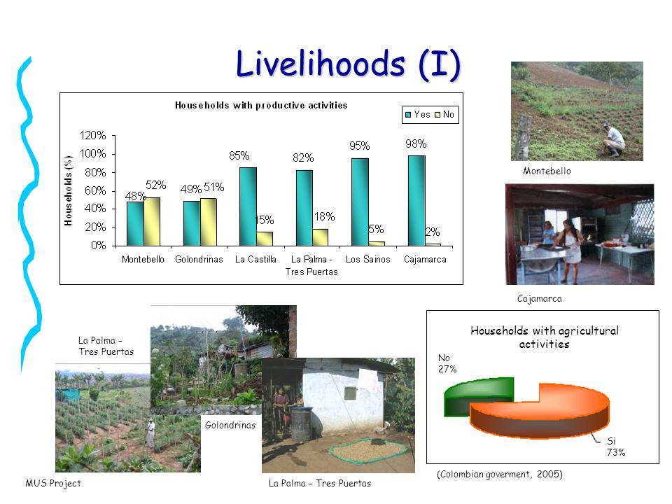 MUS Project Livelihoods (II)