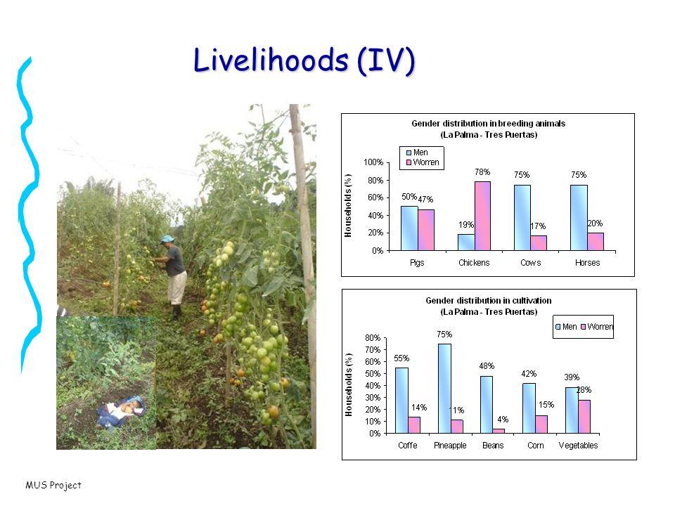 MUS Project Livelihoods (IV)