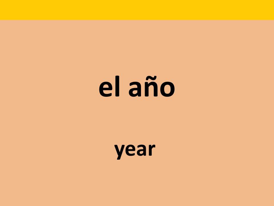 el año year