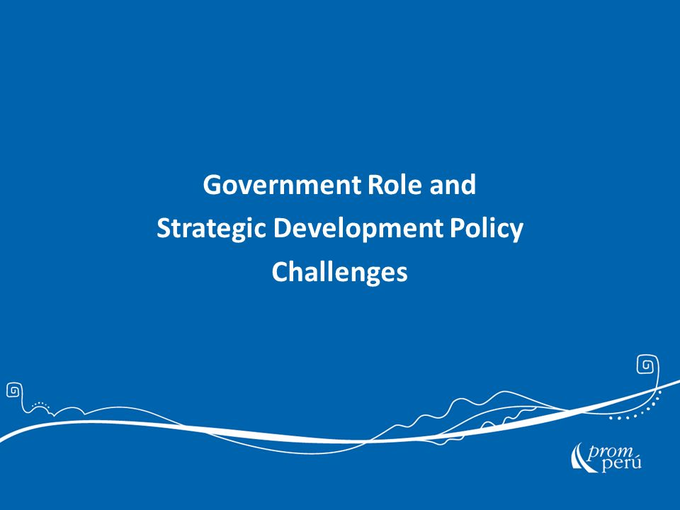 Government Role and Strategic Development Policy Challenges