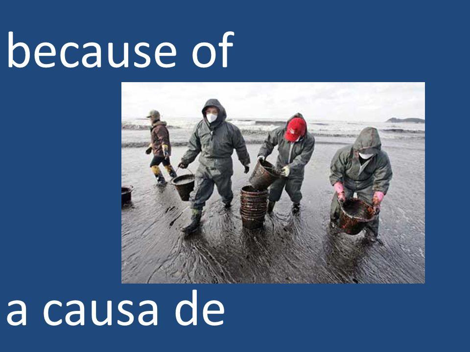 because of a causa de