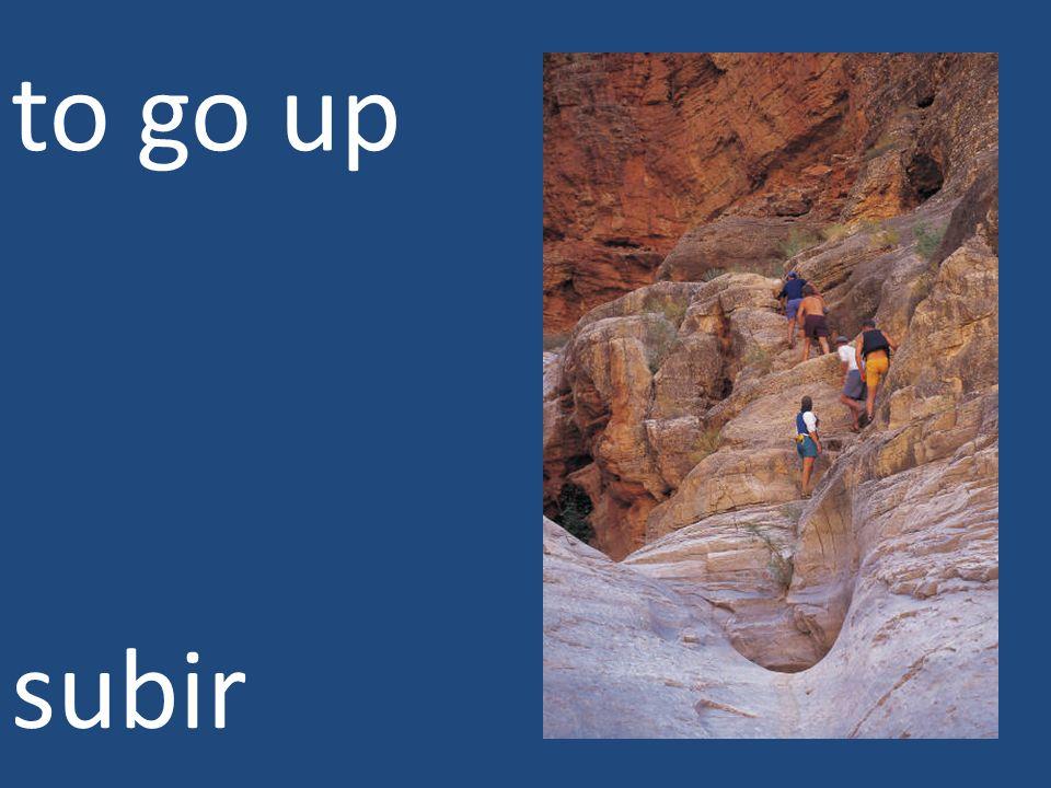 to go up subir