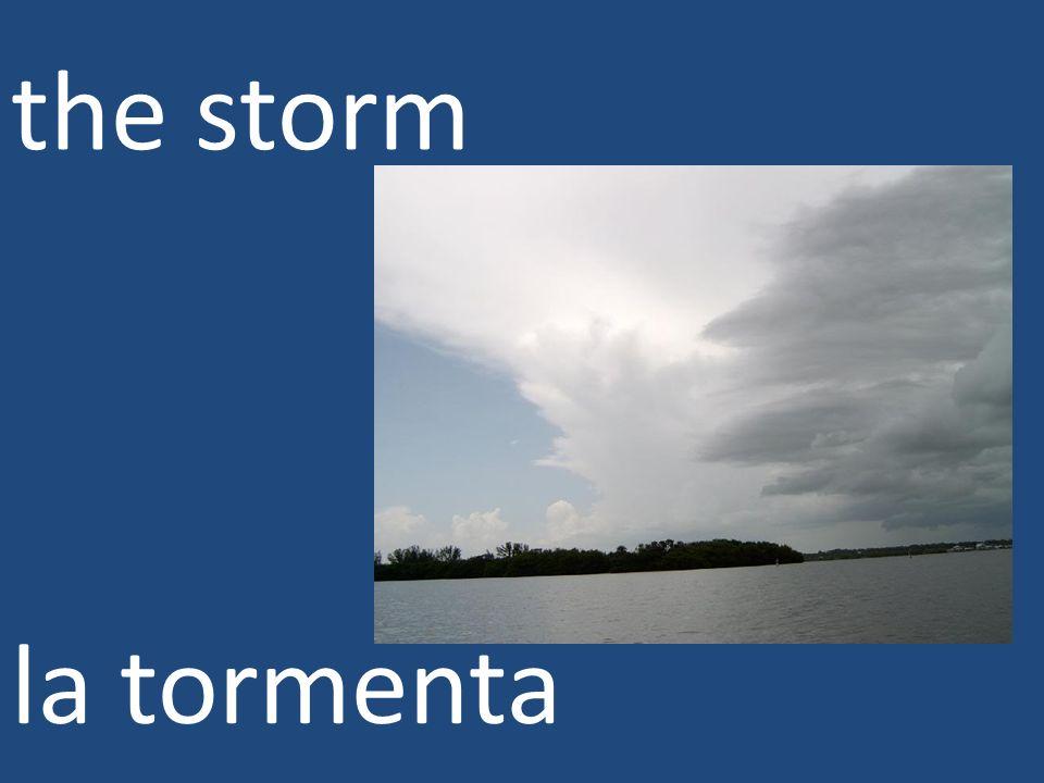 the storm la tormenta