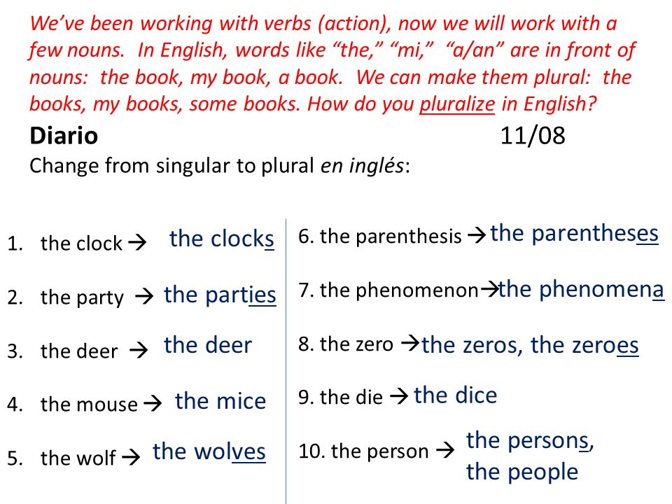 Diario 11/08 Change from singular to plural en inglés: Weve been working with verbs (action), now we will work with a few nouns.