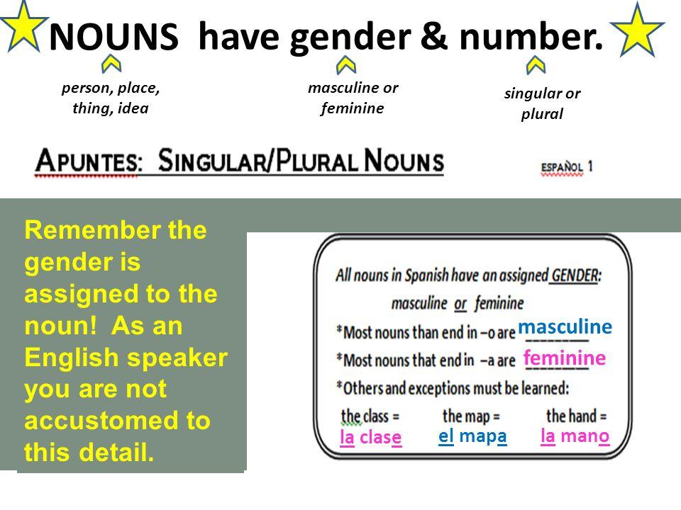 masculine feminine la clase el mapa la mano person, place, thing, idea NOUNS Remember the gender is assigned to the noun.