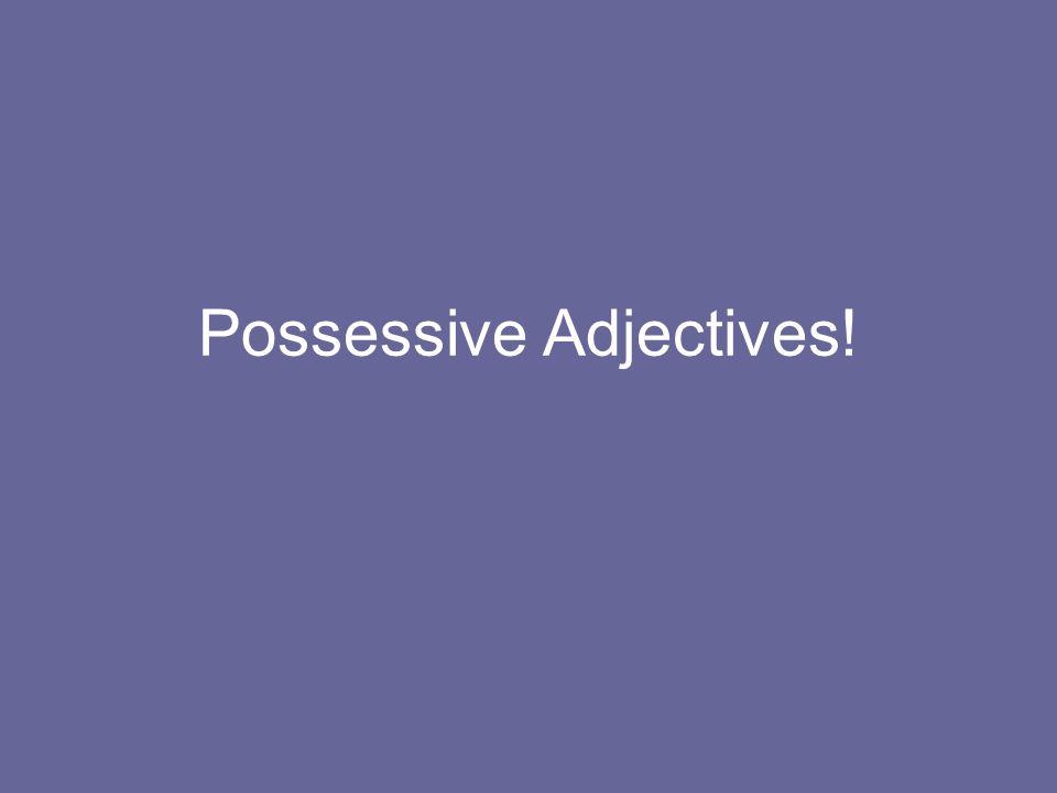Possessive Adjectives!