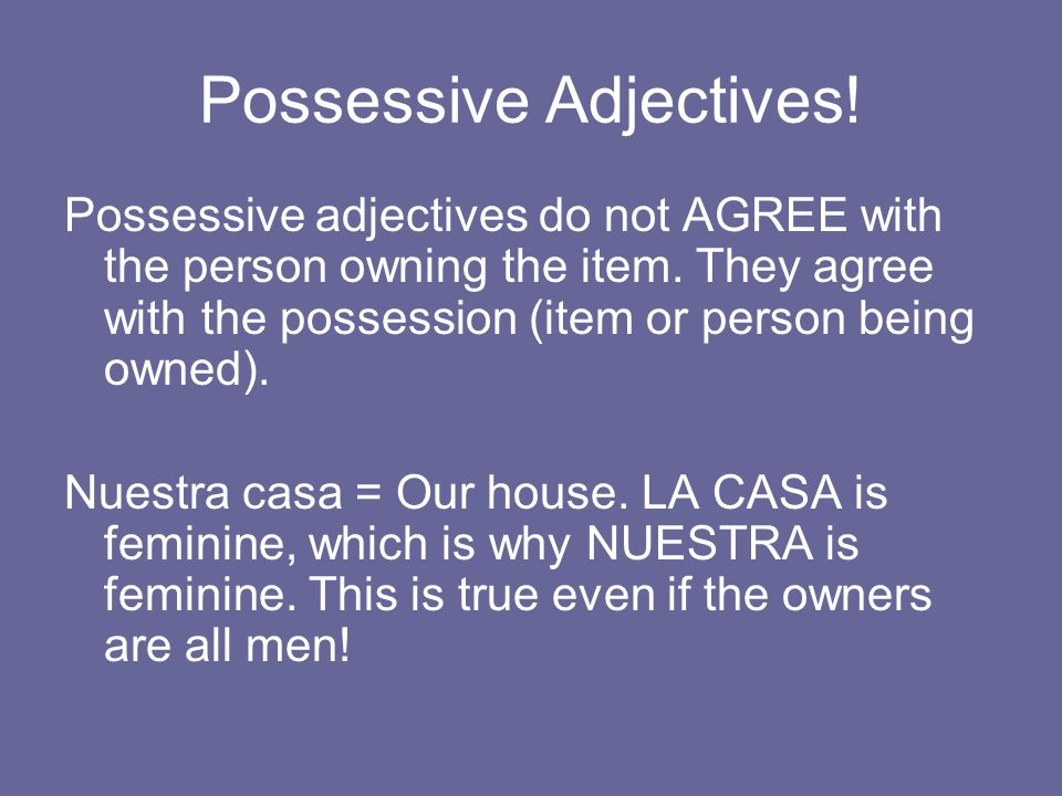 Possessive Adjectives! Possessive adjectives do not AGREE with the person owning the item. They agree with the possession (item or person being owned)