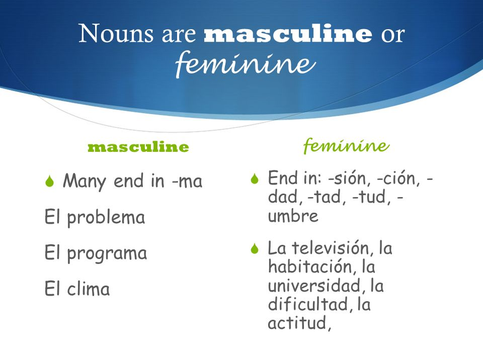 Nouns are masculine or feminine masculine Many end in -ma El problema El programa El clima feminine End in: -sión, -ción, - dad, -tad, -tud, - umbre L