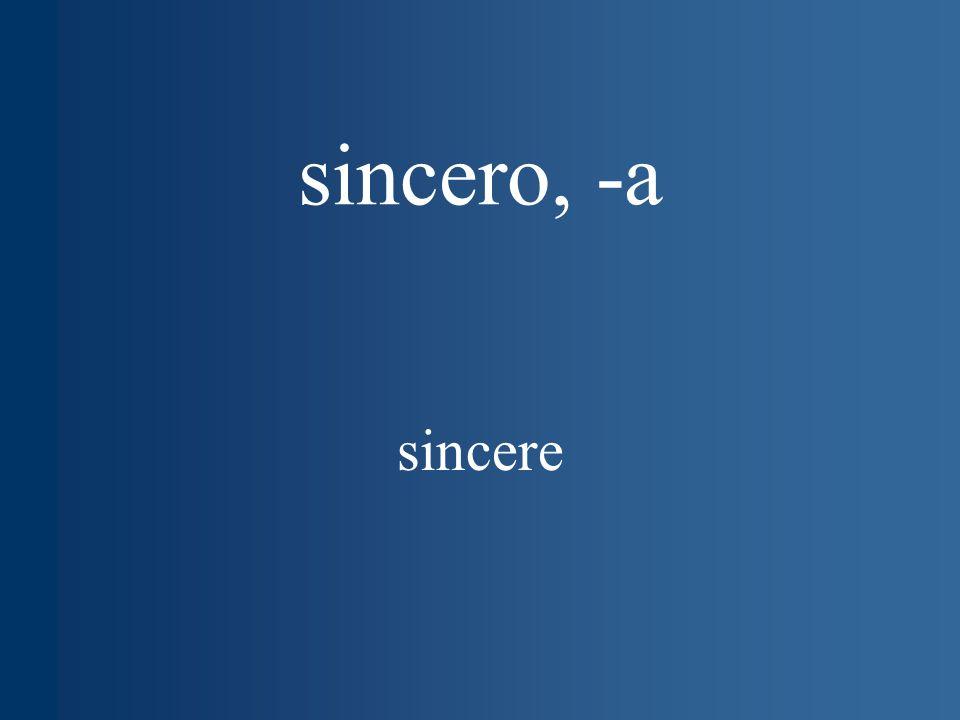 sincero, -a sincere