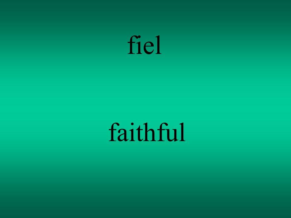 fiel faithful