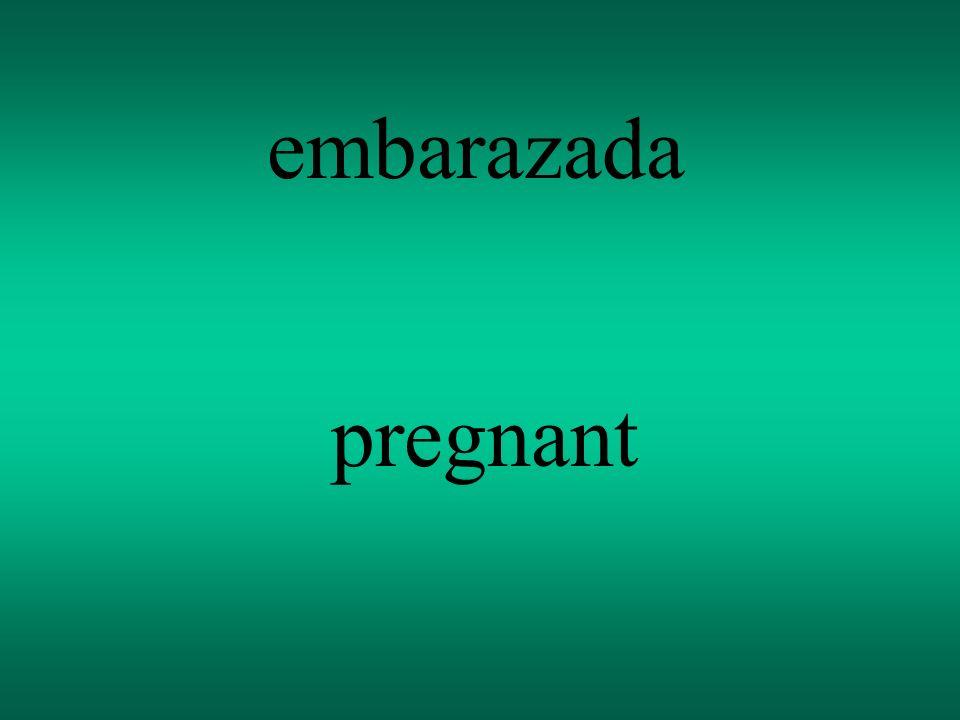 embarazada pregnant