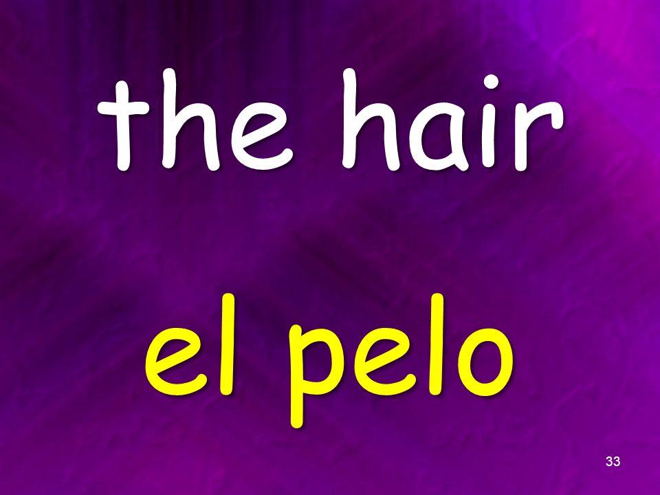 the hair el pelo 33