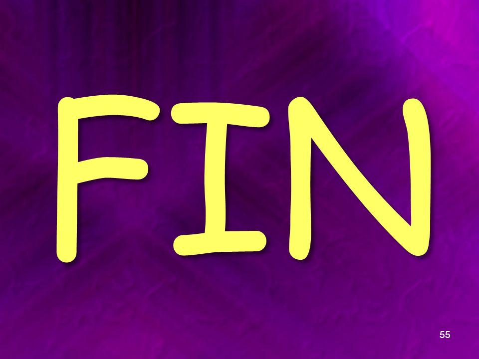 FIN 55