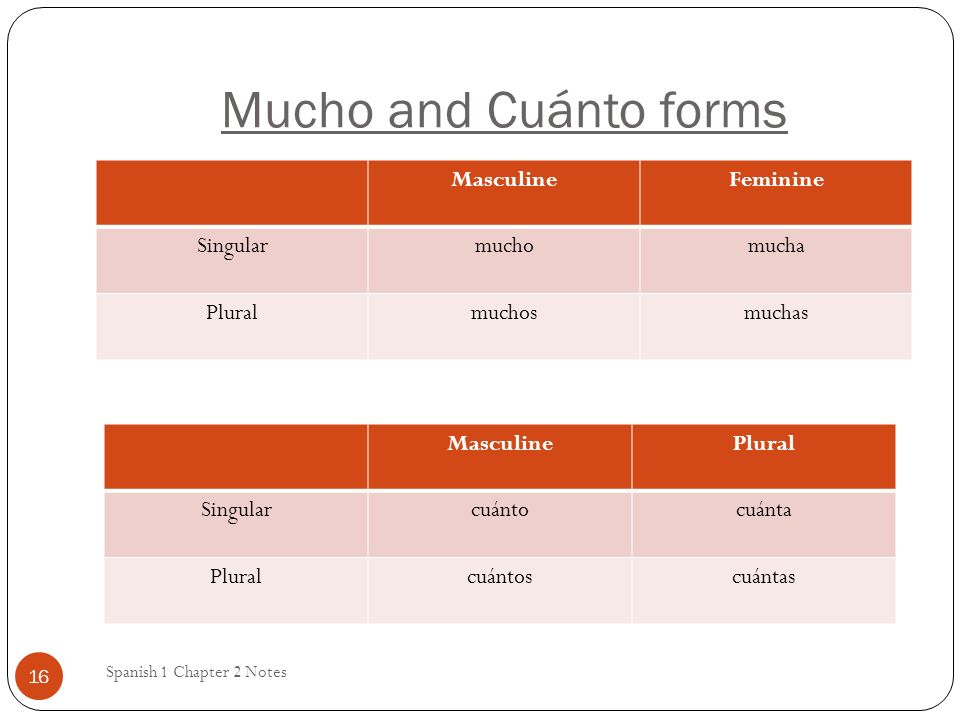 Mucho and Cuánto forms Spanish 1 Chapter 2 Notes 16 MasculineFeminine Singularmuchomucha Pluralmuchosmuchas MasculinePlural Singularcuántocuánta Pluralcuántoscuántas