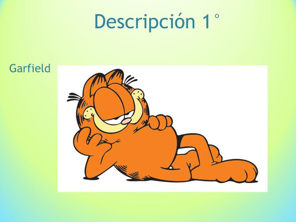 Descripción 1° Garfield