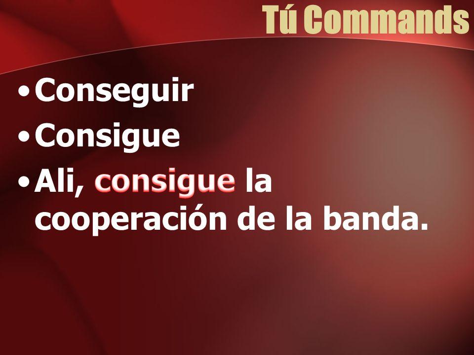 Tú Commands