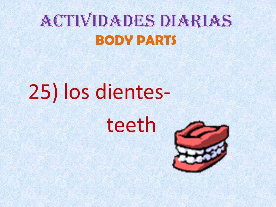 Actividades Diarias BODY PARTS 25) los dientes- teeth