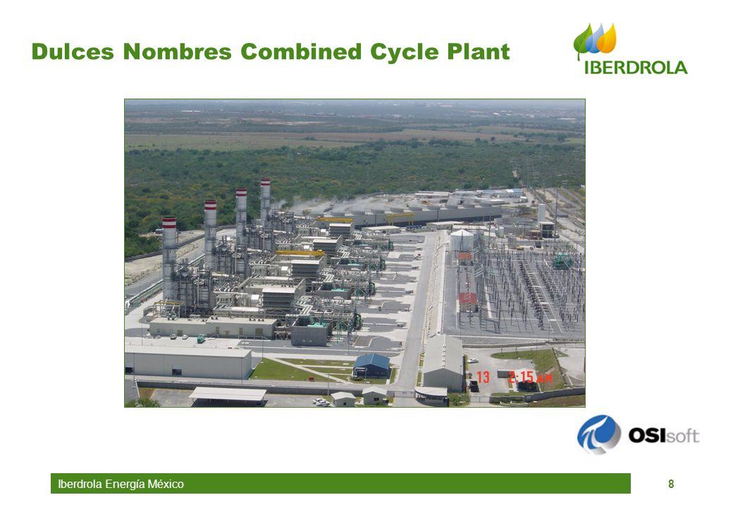 Iberdrola Energía México8 Dulces Nombres Combined Cycle Plant