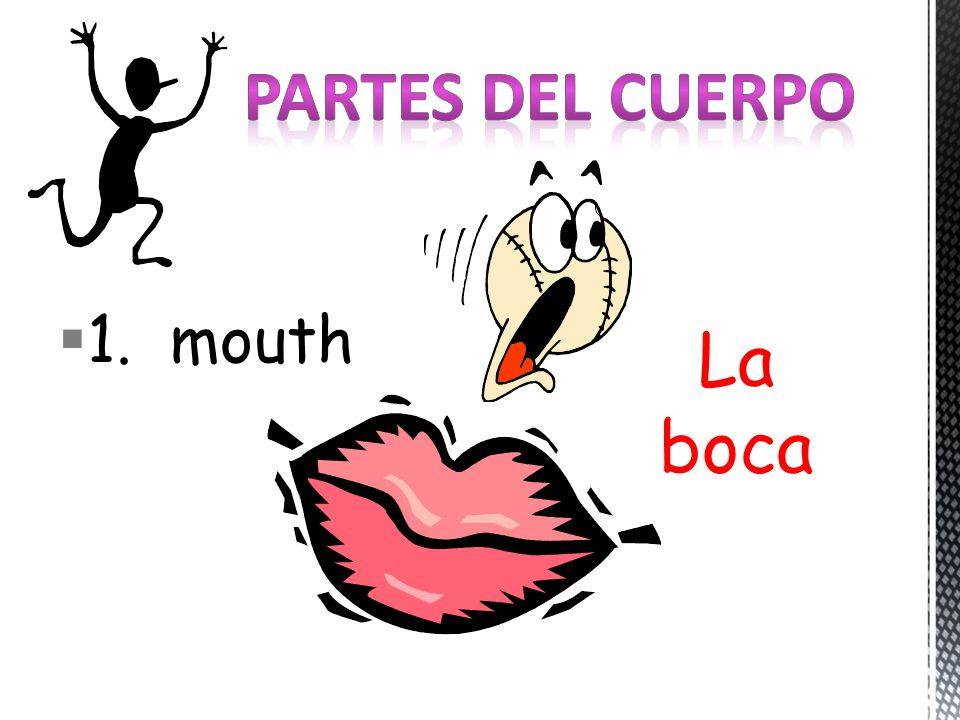 1. mouth La boca
