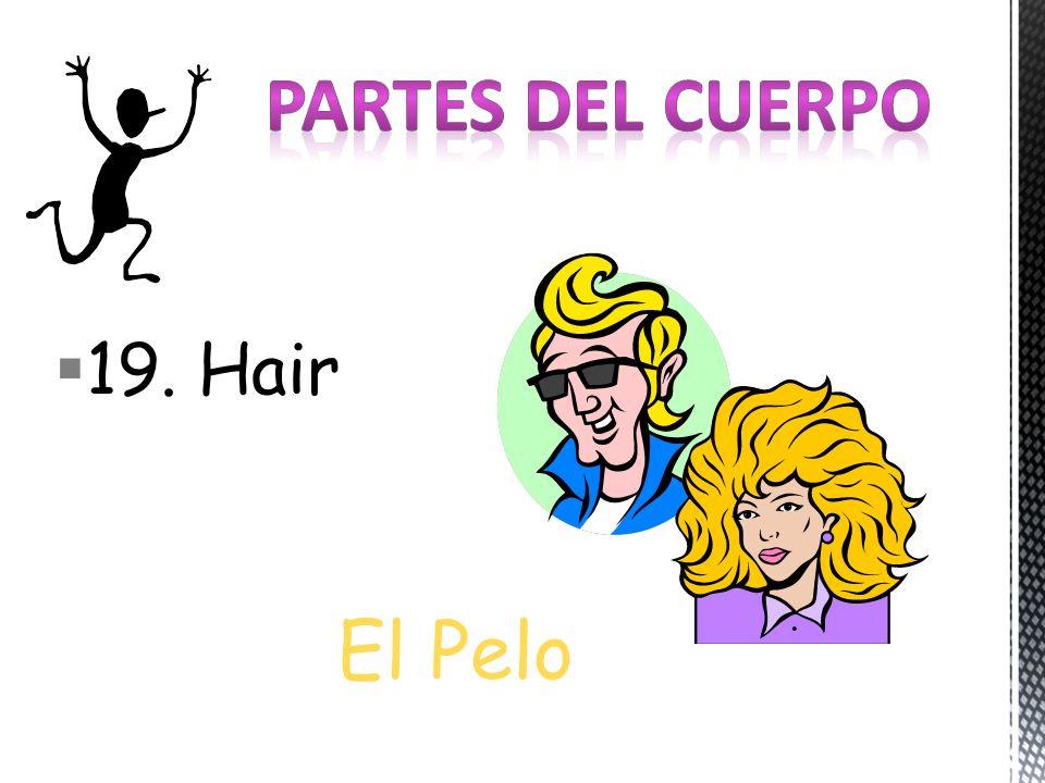19. Hair El Pelo