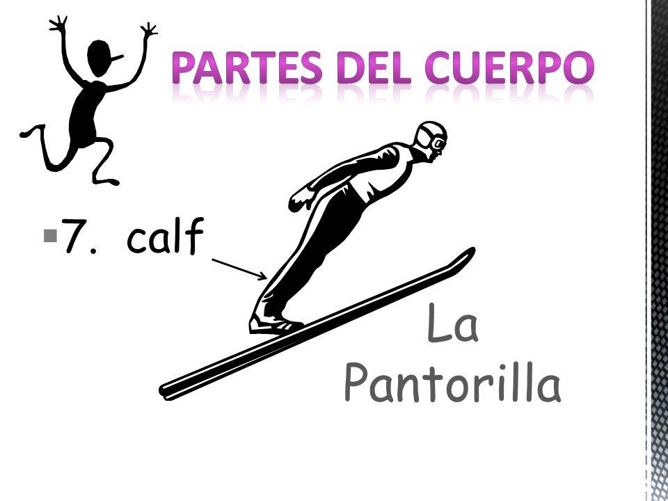 7. calf La Pantorilla