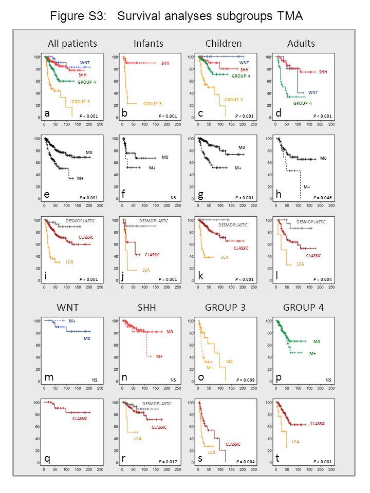 All patientsInfantsChildrenAdults WNTSHHGROUP 3GROUP 4 Figure S3: Survival analyses subgroups TMA abcd efgh ijkl mnop qrst P < 0.001 P = 0.001NSP < 0.