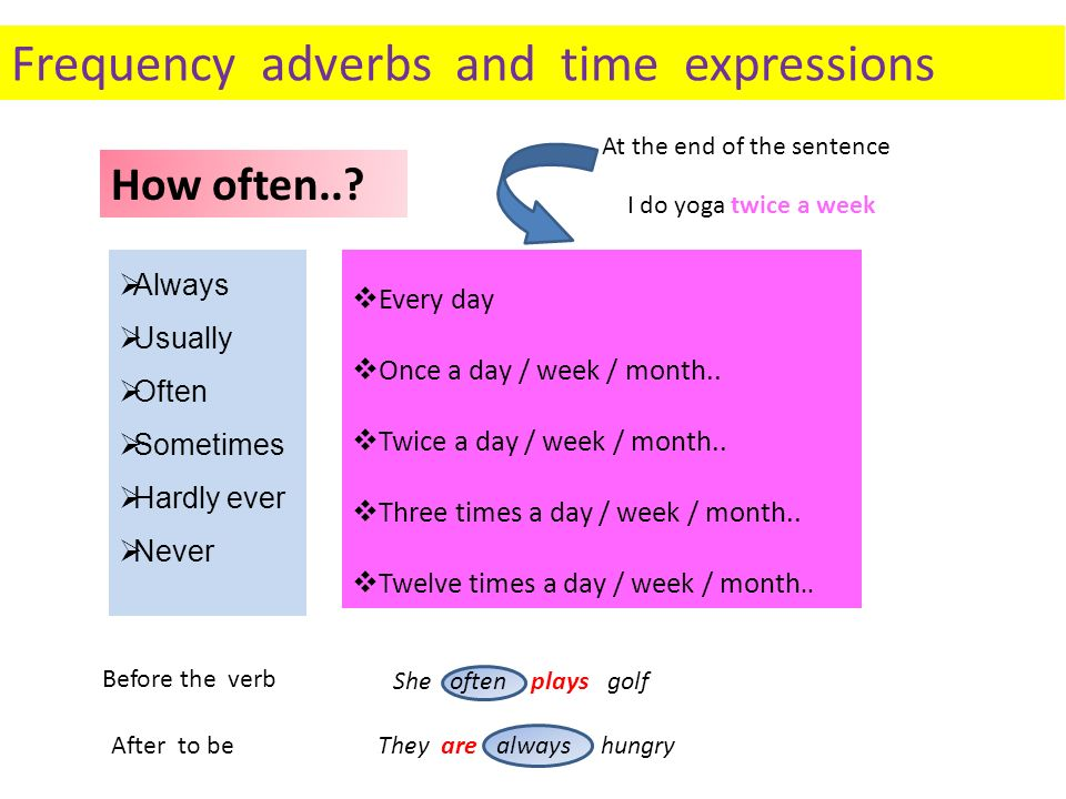 Frequency adverbs and time expressions Always Usually Often Sometimes Hardly ever Never Every day Once a day / week / month.. Twice a day / week / mon