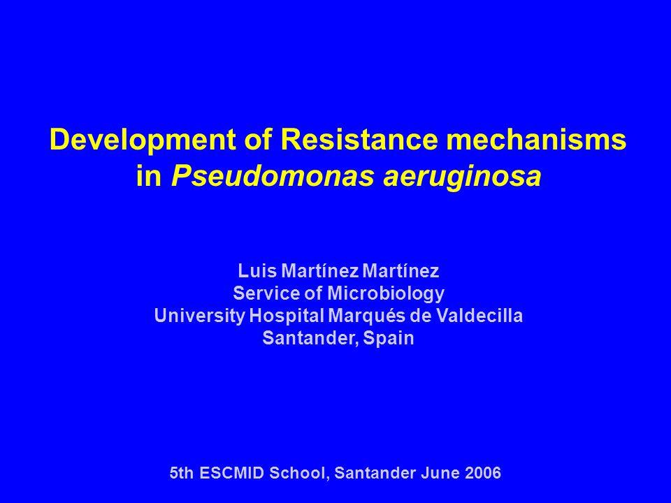 Development of Resistance mechanisms in Pseudomonas aeruginosa Luis Martínez Martínez Service of Microbiology University Hospital Marqués de Valdecill