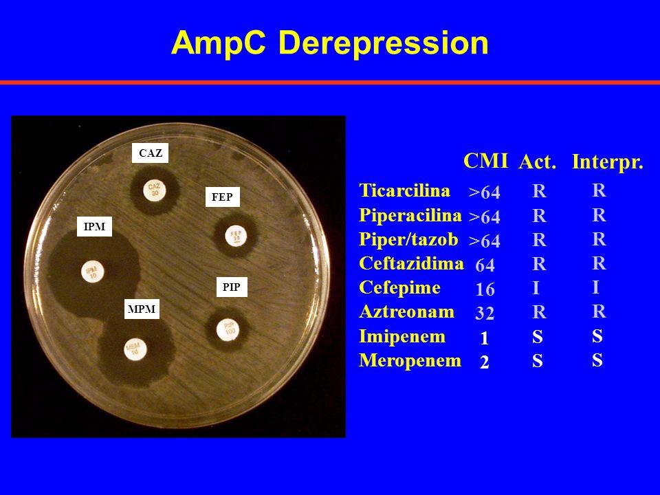 Ticarcilina Piperacilina Piper/tazob Ceftazidima Cefepime Aztreonam Imipenem Meropenem >64 64 16 32 1 2 CMI RRRRIRSSRRRRIRSS Interpr. RRRRIRSSRRRRIRSS
