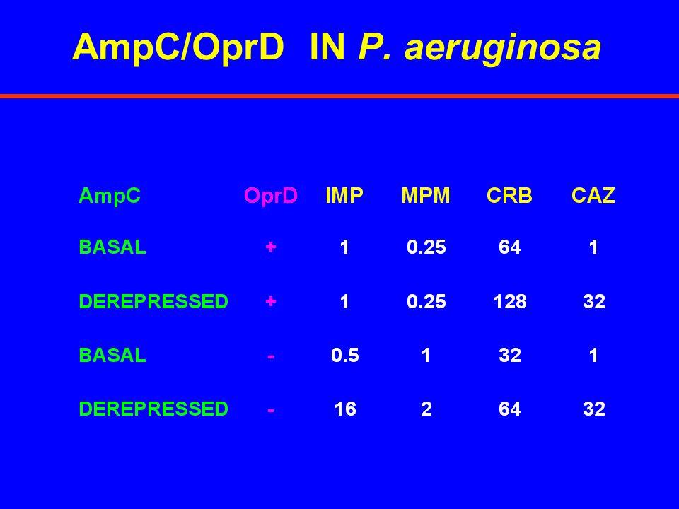 AmpC/OprD IN P. aeruginosa