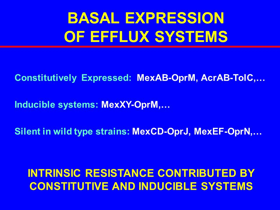 BASAL EXPRESSION OF EFFLUX SYSTEMS Constitutively Expressed: MexAB-OprM, AcrAB-TolC,… Inducible systems: MexXY-OprM,… Silent in wild type strains: Mex