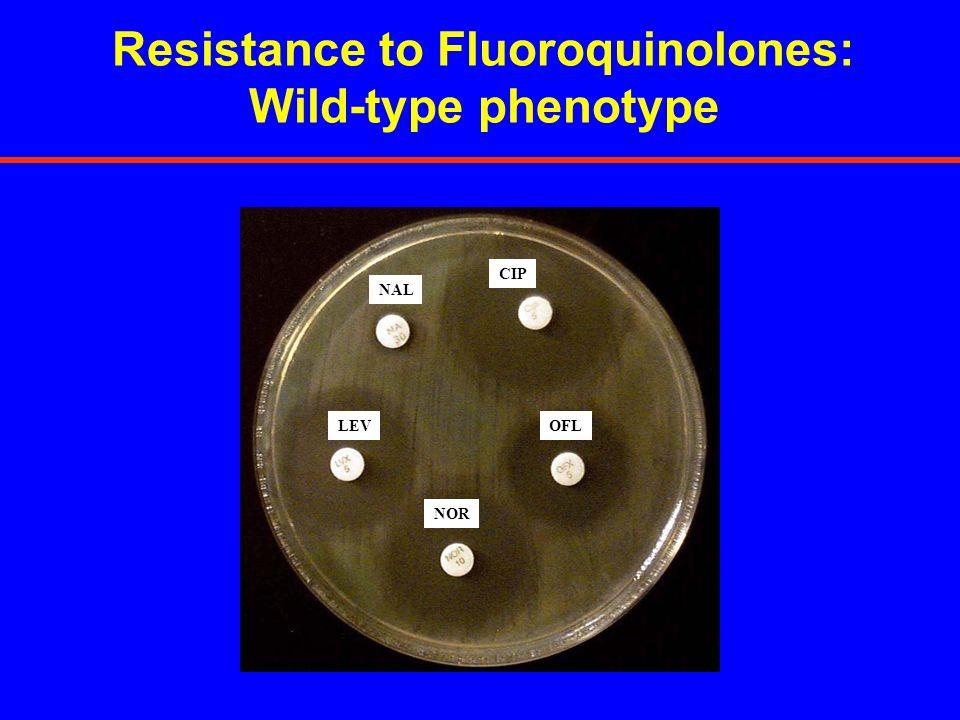 Resistance to Fluoroquinolones: Wild-type phenotype LEV NOR OFL CIP NAL